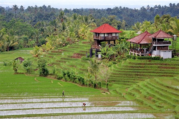 An inexpensive place to start a new life in is Bali, Indonesia