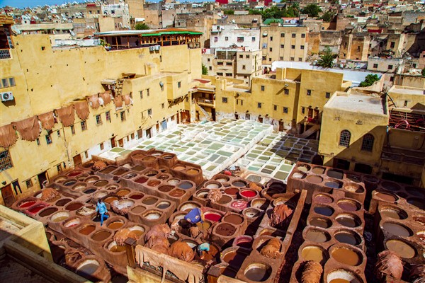 Chouara Tannery Leather Tanning Fez, Morocco