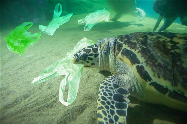Plastic bags are getting banned in Thailand