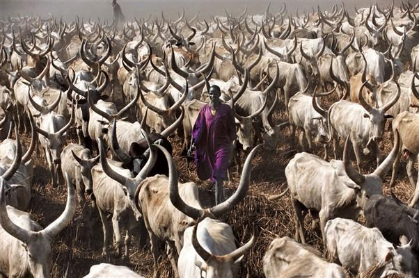 Dinka tribe